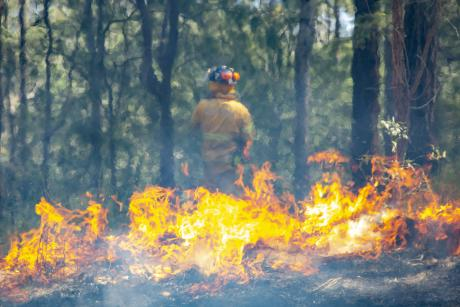 Seqwater Fire Officers undertake a planned burn