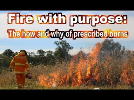 Fire with purpose:  The how and why of prescribed burns