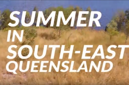 Summer in SEQ thumbnail