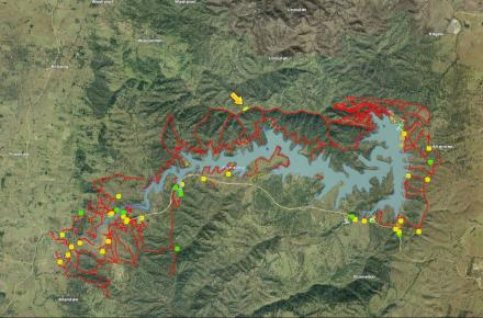Thumbnail of Wyaralong planned burn map - overview